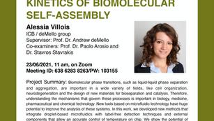 PhD public presentation by Alessia Villois