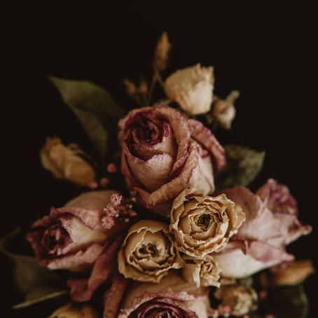 Piękno ukryte w roślinach
