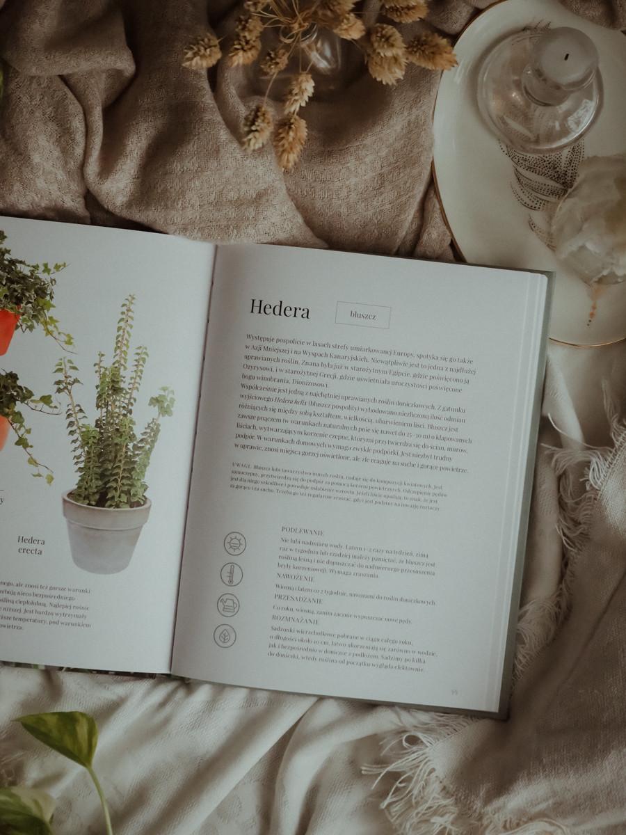 Książka plant power otwarta na stronie gdzie jest opis Hedery