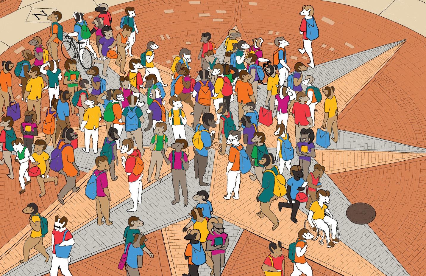 Where's Wellness? Background Illustration