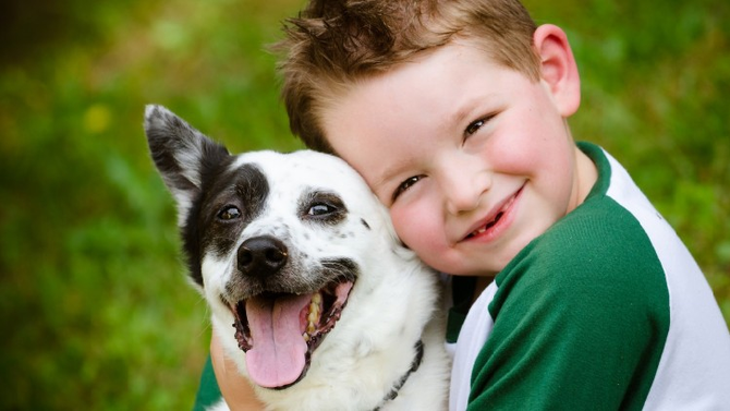 Convívio com animais de estimação contribui nas habilidades sociais das crianças