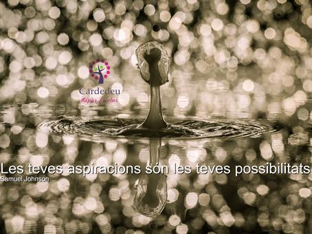Aspiracions i possibilitats