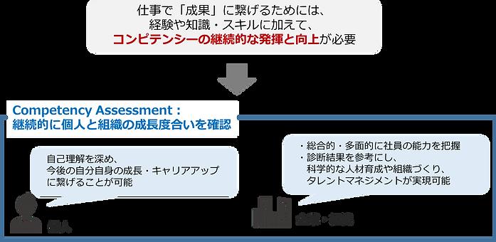 コンピテンシー診断説明.png