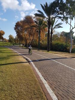 ילדה מדוושת על אופניים בפארק