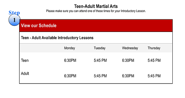 Teen-Adult Web Schedule and Intro Classe