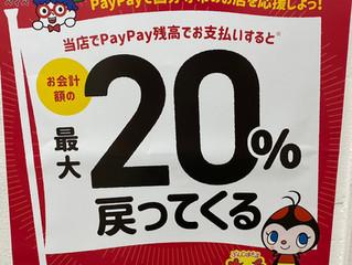 Pay Payでの支払いがお得に!!!