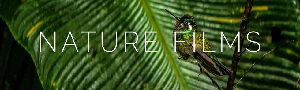 Nature_Films.jpg