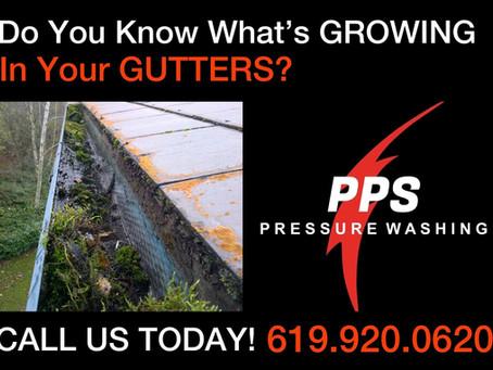 Check Those Rain Gutters!