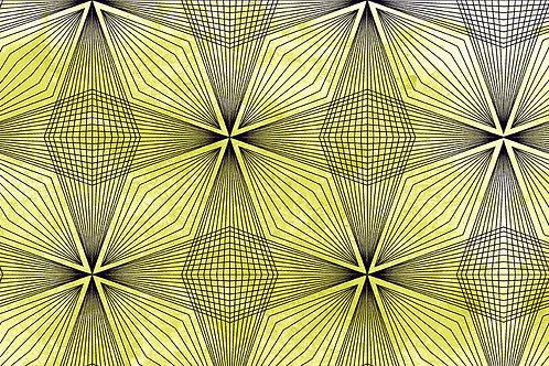 Prism 9576 V