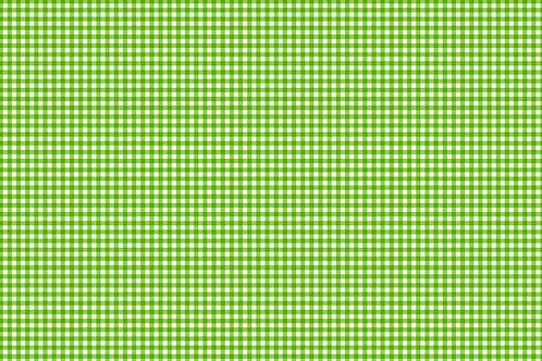 Green Gingham 920/G7