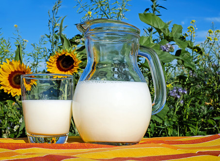 Treatment for Lactose Intolerance You Must Want to Know