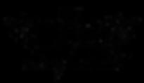logo transp nero.png