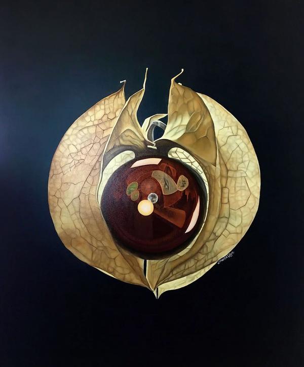"""'Apple of Peru,' by Elizabeth R. Wilson, 2018. Oil on Canvas, 48""""x60"""""""
