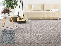 Mohawk Carpet Exquisite pic.jpg