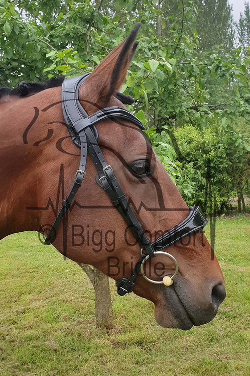 Bigg Comfort Cavesson Standard Headpiece Bridle