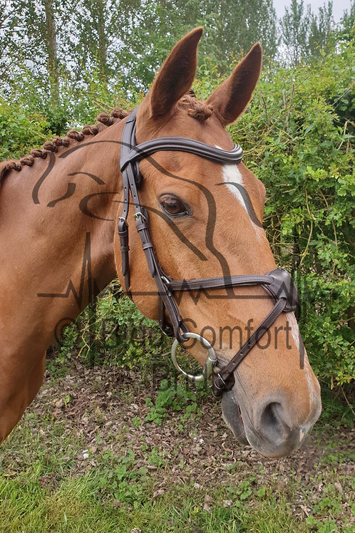 Bigg Comfort Grackle Standard Headpiece Bridle