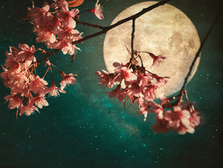 Full Flower Moon Of May Last Full Super -Moon of 2020
