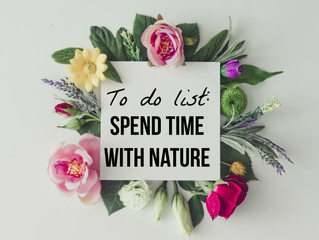Why Spending More Time with Nature is Beneficial.