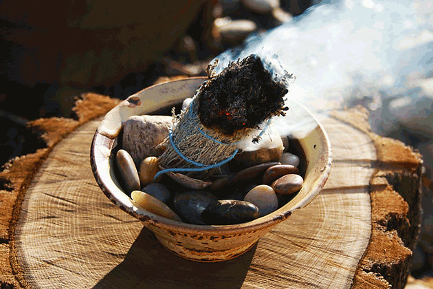 Why you should start burning sage  Sage Smudging facts and uses