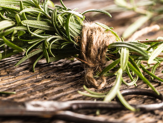 Burning Rosemary 🔥 Cleansing Herb Study: Why you should Burn Rosemary.