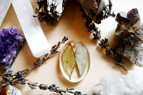 Forever 2 White sage leaves Dried/Pressed Oval Pendant