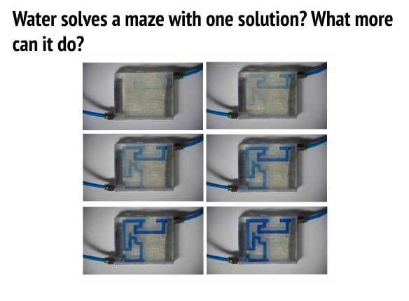 maze1.png