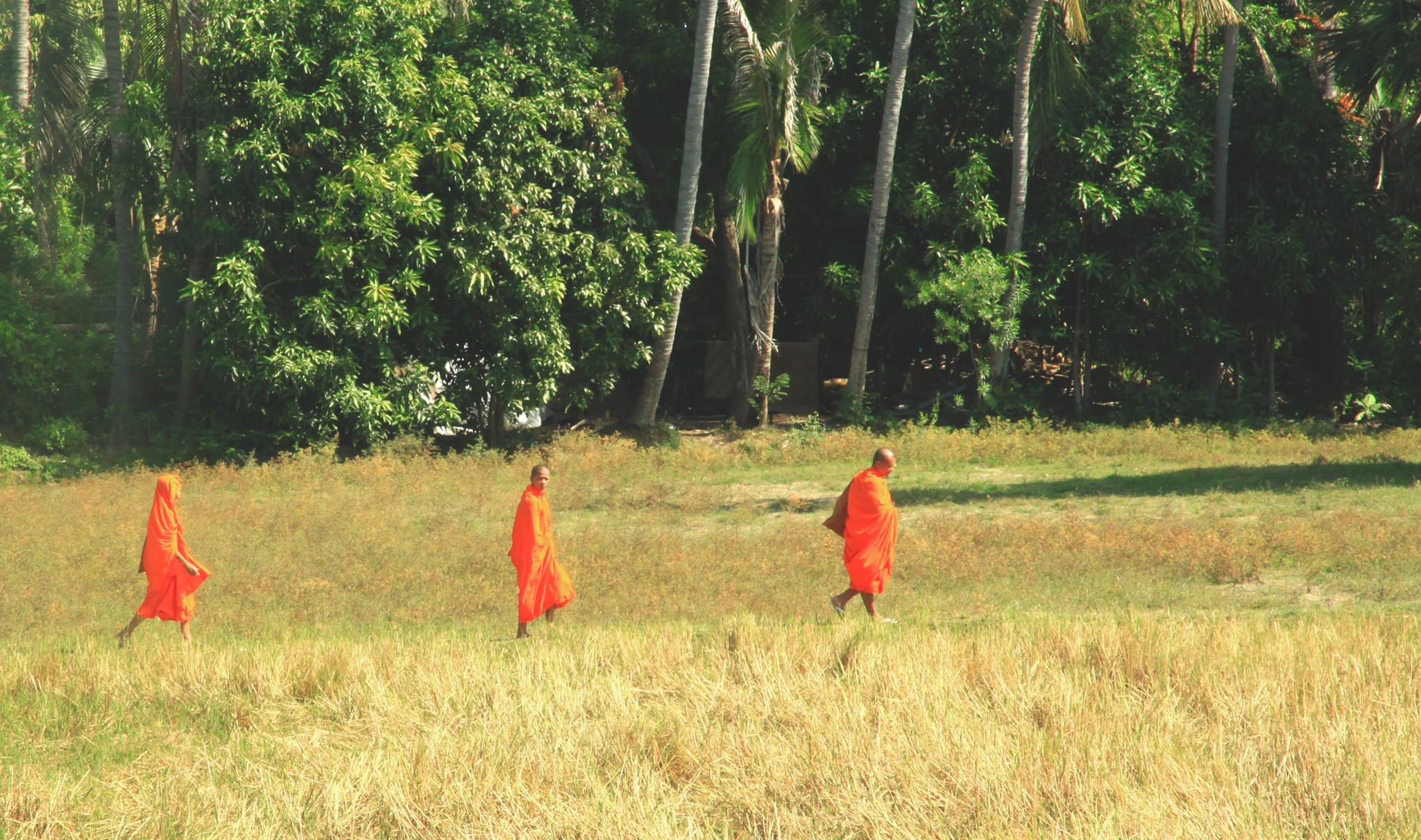 Monks are enroute