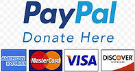 PayPal Giving Fund logo w cards.jpeg