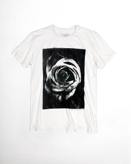WHT_Rose_T_SML.jpg