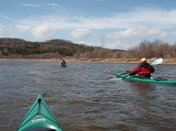 Hammond River