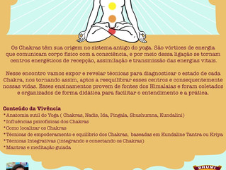 Chakras e Anatomia Sutil do Yoga