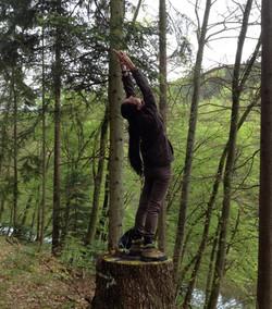 Baum-Yoga Aquila Camenzind