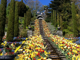 Eindrückliche Gärten der Welt