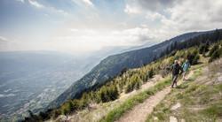 Yoga im Vigilius Mountain