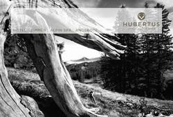 Hubertus Alpin Loge & Spa