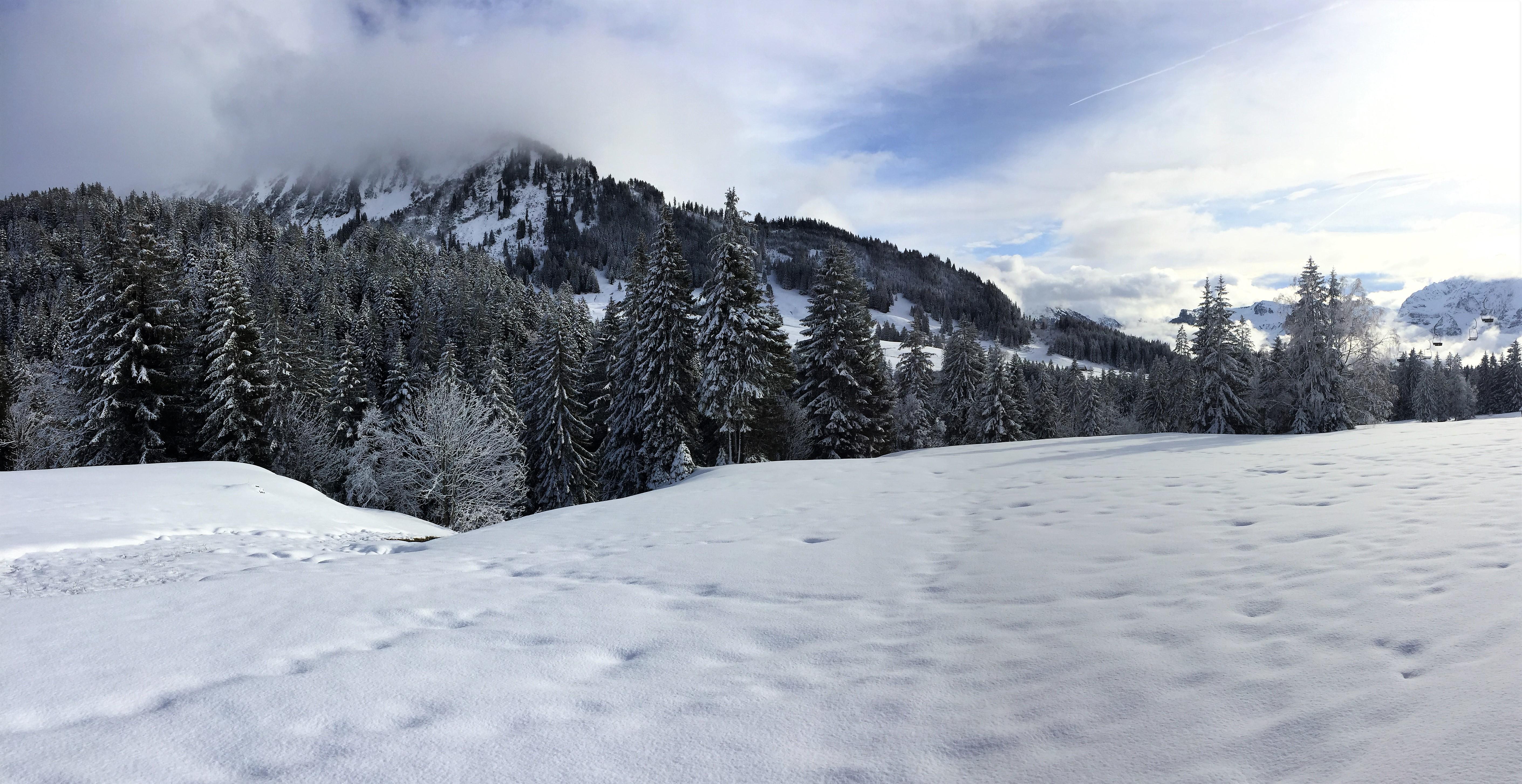Aquila Camenzind_winter in den bergen
