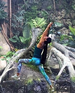 Yoga im Wald_Aquila