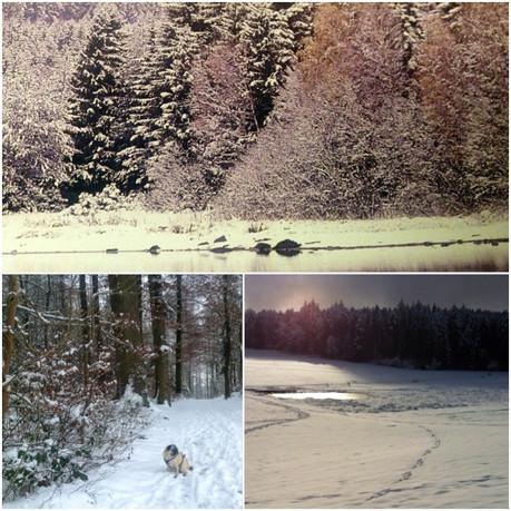 **Winter's Tale**