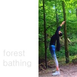 Aquila Camenzind Yoga im Wald