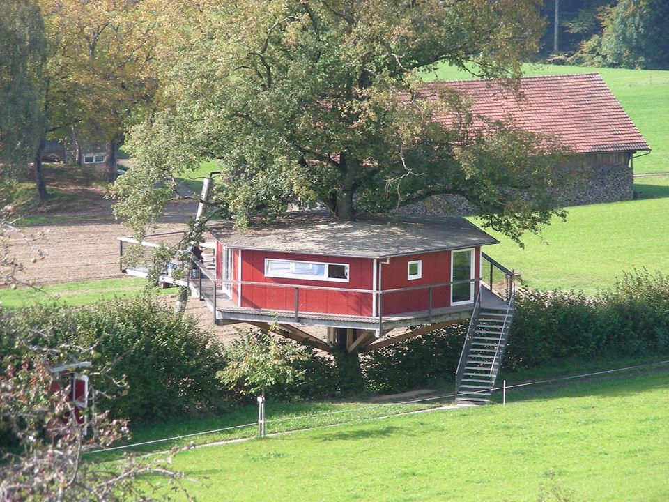 Baumhaus l Tree House