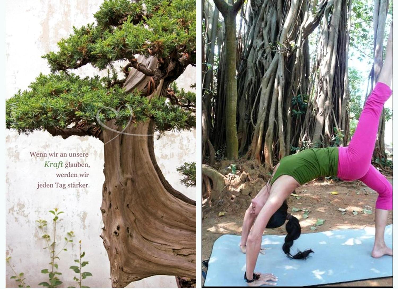 Aquila Camenzind | Tree of Life