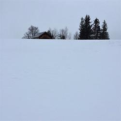 Aquila Camenzind wintermood