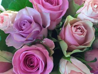 Rosen Geschichten - Rosenmärchen
