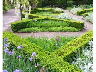 Ferne Gärten