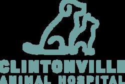 CAH_Logo_Teal_V