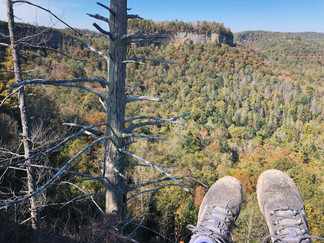 Get outside and explore: Some of my new favorite hikes