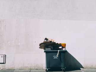 Don't Be Trashy: Recycling Responsibly In Lexington