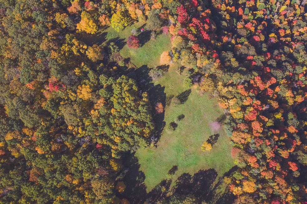 Park Wide Aerial.jpg