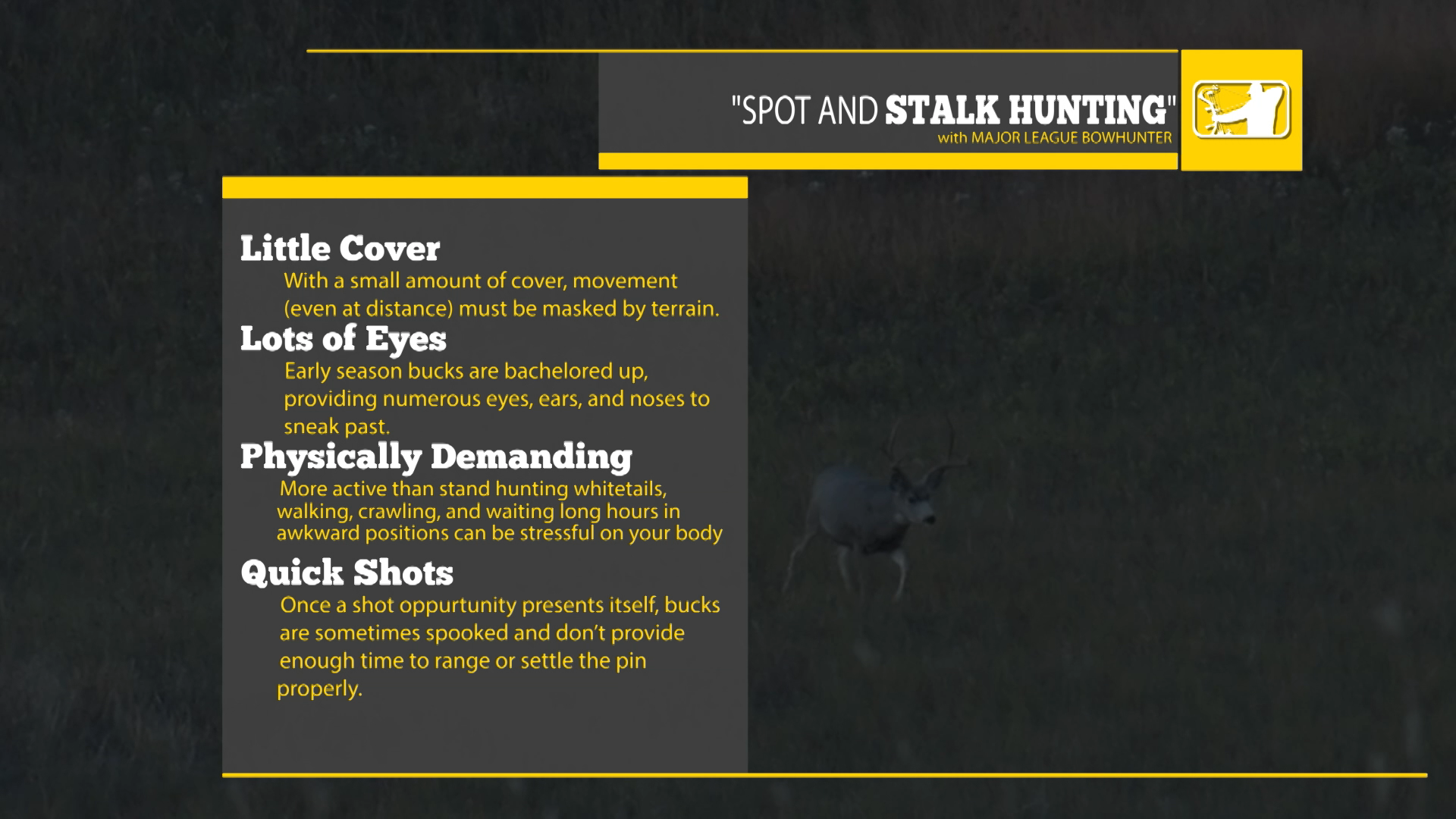 SPOT AND STALK HUNTING