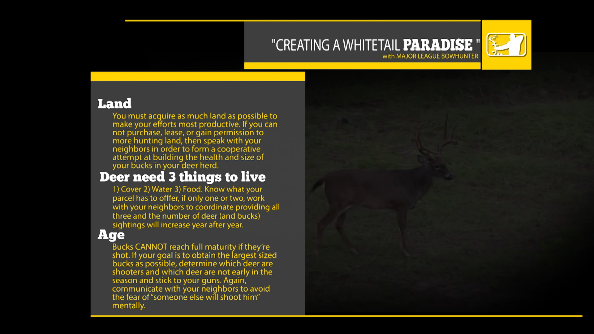 CREATING WHITETAIL PARADISE